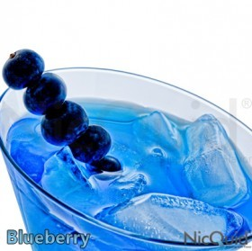 Blueberry NicQuid E-Juice